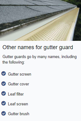 other names for gutter guards